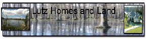 Lutz homes and land for sale banner   zemetres.com